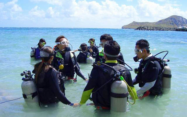 スキューバ・ダイビング  ファンダイビングコース(送迎付き)