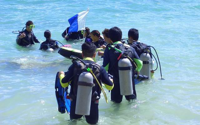 スキューバ・ダイビング  体験ダイビングコース(送迎付き)
