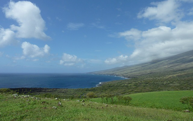 マウイ島1日観光(東マウイ1周・天国のハナ)ツアー