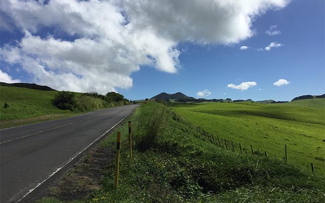コハラ名所めぐり(半日コース)