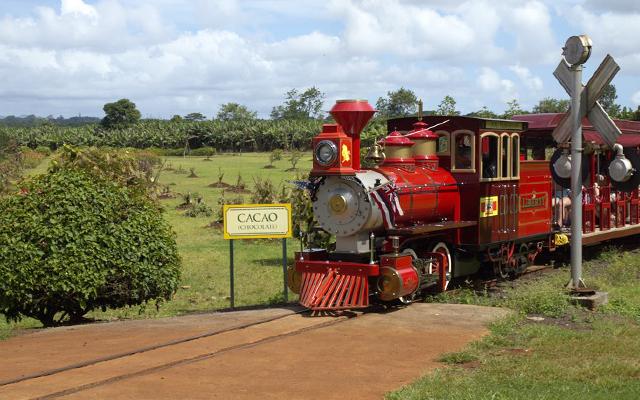 ドール・プランテーションパイナップル列車とノースショア観光