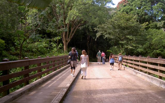 ワイメアバレー・ハイキングとノースショア観光
