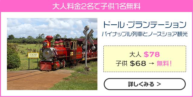 ドール・プランテーション パイナップル列車とノースショア観光