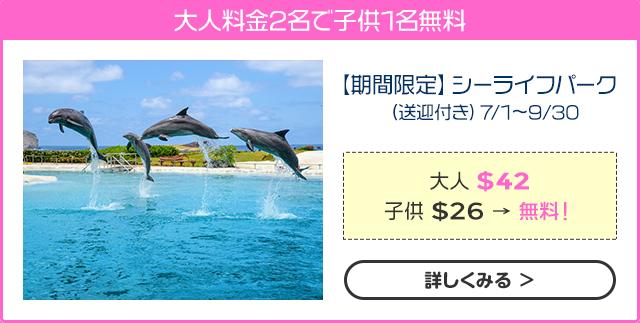 【期間限定】シーライフパーク(送迎付き)7/1~9/30
