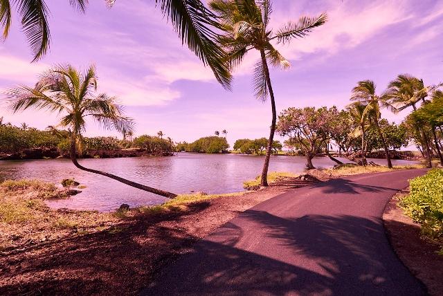 ハワイ島 星空&サンセットツアー