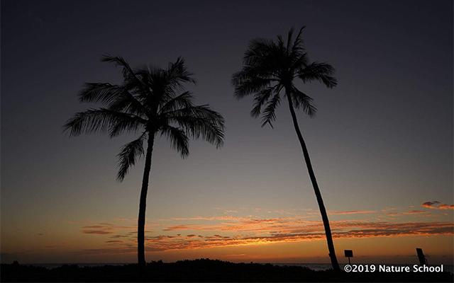 ビーチで夕陽鑑賞&マウナケア山麓星空観測ツアー