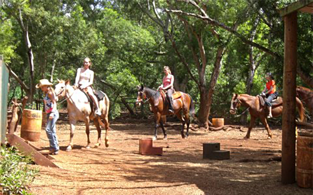 渓谷乗馬90分とノースショア観光