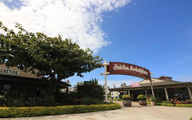 オアフ島人気スポット満喫観光