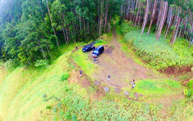 ワイピオ渓谷 癒しの森の絶景とハワイ島グルメツアー