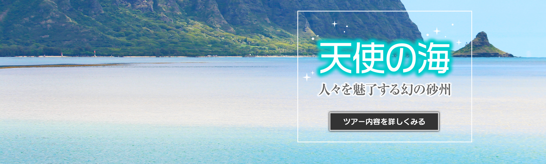 hiop_banner_home_tenshi_pc.jpg