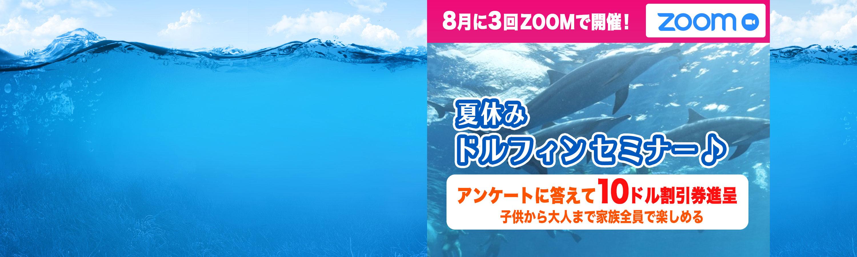 dolphin_zoom_slider (1).jpg