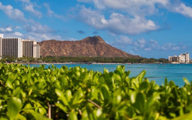 今日のハワイを生中継!ロイヤル・スター号で巡るホノルル オンラインツアー